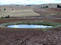 Circular pond in a ploughed field.