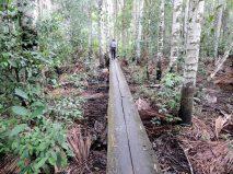 Long walkway to the Lost Lagoon