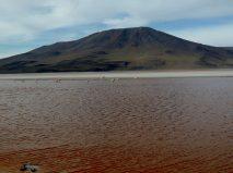 The Coloured Lagoon