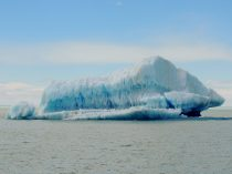 Chunk of oce from Viedma Glacier